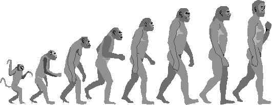 Evolution.jpg (12711 bytes)